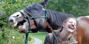 caballo y risa