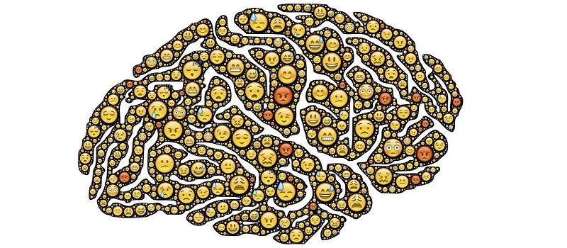 Cómo procesa las caras nuestro cerebro